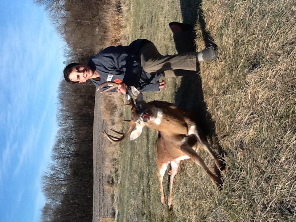 Deer moving at Shuhart Creek
