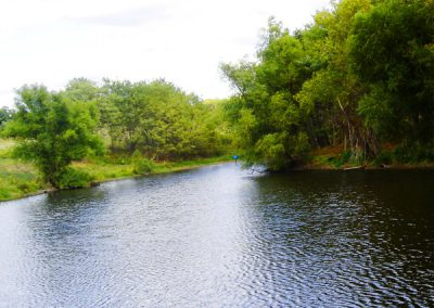 Shuhart Creek Whitetails Photo of Shuhart Creek